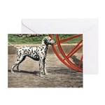 Dalmatian Art Greeting Cards