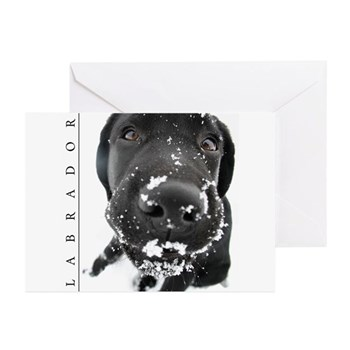 Black Labrador Retriever Stamps