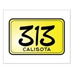 313 License Plate Small Poster