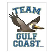 Team Gulf Coast Pelican Small Poster