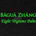 Baguazhang Green T-Shirt