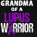 Grandma of a Lupus Warrior with Ribbon T-Shirt