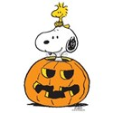 Snoopy and Woodstock Hallow Shirt