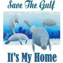 Save The Gulf Shirt